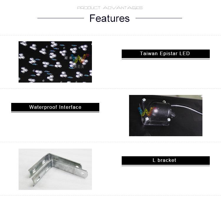 300mm housing LED traffic light  det4